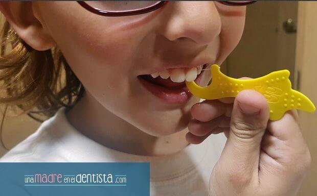 flosser o hilo dental