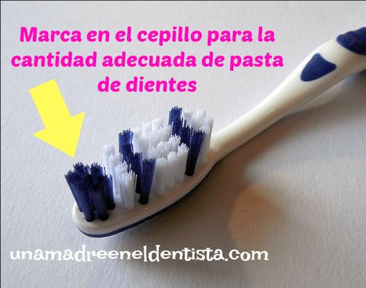cantidad de pasta de dientes